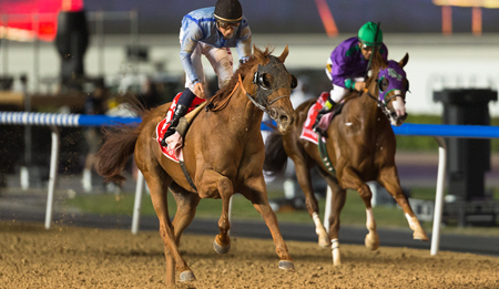 Prince Bishop Wins Dubai World Cup